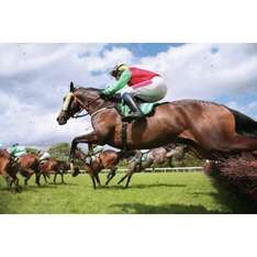 Argos...Day at the Races for Two...Half price £34.99
