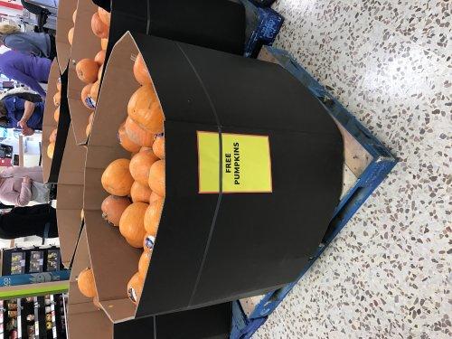 Shedload of Free Pumpkins @ Tesco Basingstoke