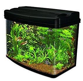 Interpet Fish Pod Glass Aquarium Fish Tank - 64 L £74.99 from Amazon