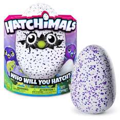 Hatchimals now available at Very.co.uk @ £59.99