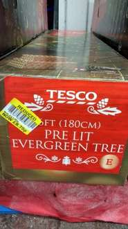 Tesco Abingdon, Christmas trees reduced instore £5