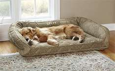 ORVIS 15% OFF MEMORY FOAM DOG BEDS PLUS FREE DELIVERY LIMITED TIME @ Orvis