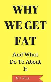 Perfect FREE kindle book for after the xmas binge - Why We Get Fat: And What To Do About It