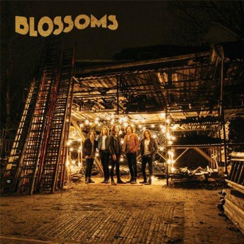 Blossoms Album  £3.99 @ Google play
