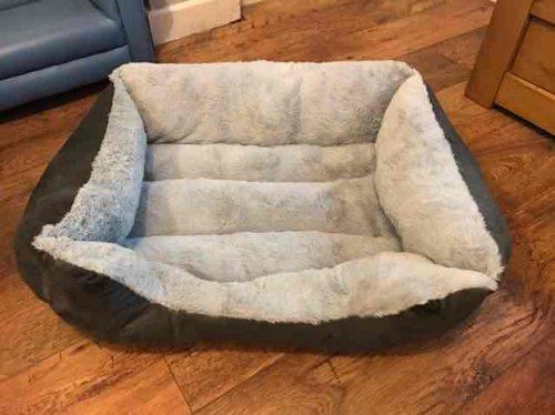 medium sized dog bed £5 in Asda Ellesmere Port