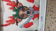 Christmas cushion in store at tesco  £1.50