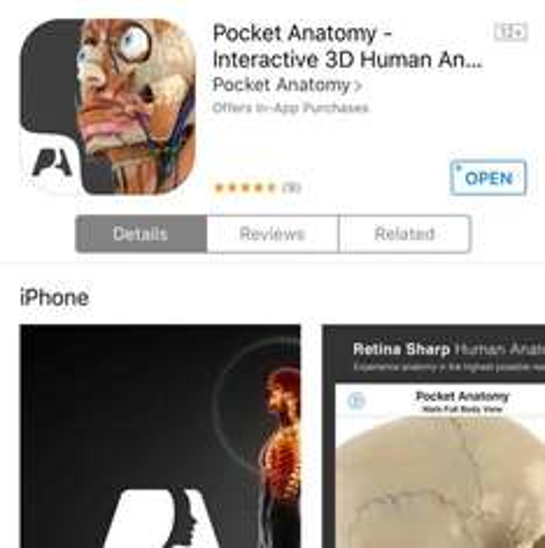 Free @ AppStore Pocket Anatomy - Interactive 3D Save £10.99