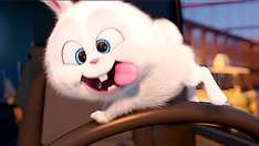 The Secret Life Of Pets --- Robinson Crusoe --- Kubo And The Two Strings £2.50 Movies For Juniors @ Cineworld