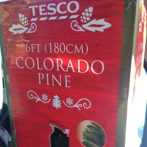 6ft (180cm) Colorado pine Christmas tree £2 @ Tesco instore