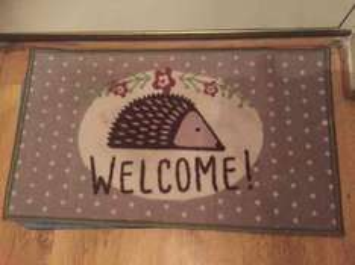 Hedgehog Welcome Door mat £2.99 instore Home Bargains