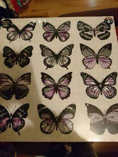 butterfly canvas £1 down from £4.99 at b&m instore