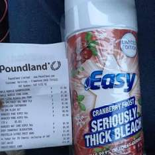 Poundland bleach twin pack 5p