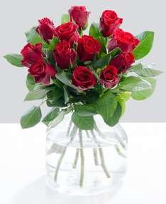 Debenhams 12 Red Roses couriered for £20