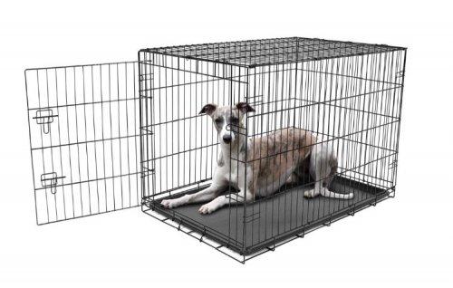 Carlson Large Dog Crate - Amazon £13.25 Prime