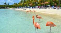 London to Aruba (Dutch Caribbean island) return £303 - in April with Thomson Airlines