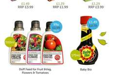 Fruit , Flower and tomato feed all £1.99 > 99p 500ml @ home bargins