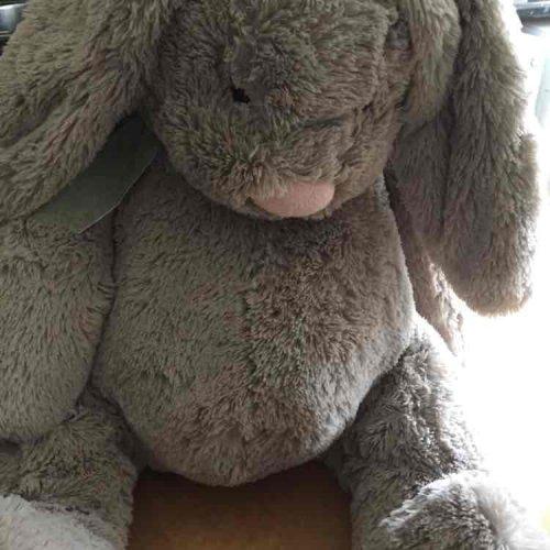 sainsburys large bunny £4.50 (instore)