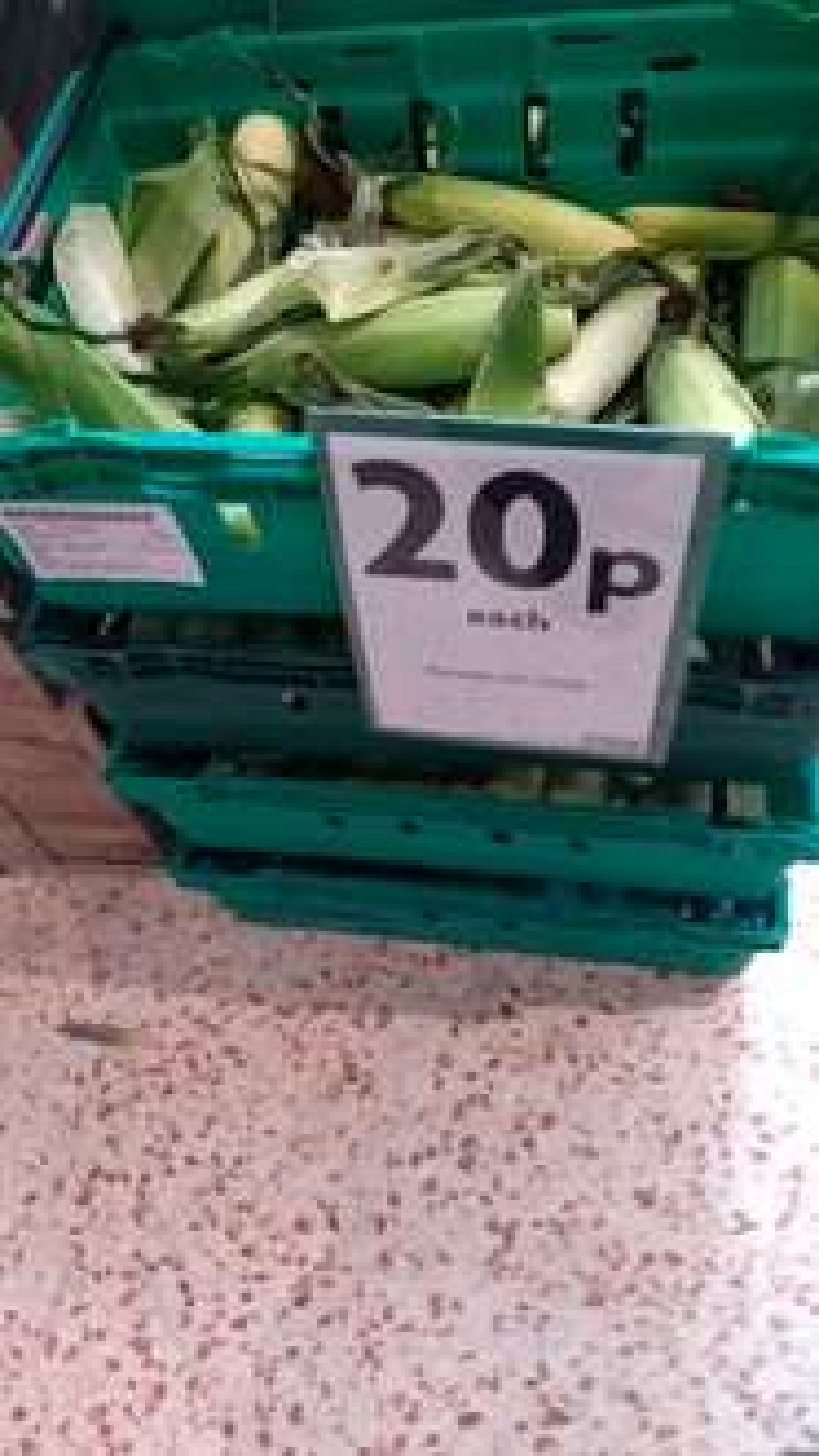 Whole Sweet Corn Cobs 20p each @ Morrisons