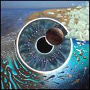 Pink Floyd - Pulse 2 CD only £7.99 @ HMV