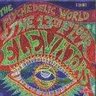 13th Floor Elevators - The Psychedelic Sounds of the 13th Floor Elevators [CD Box set] £5.87 + Free Delivery/Quidco @ Power Play Direct