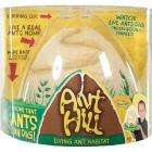Ant Hill - half price - £7.49 delivered @ Amazon