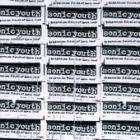 Sonic Youth - Screaming Fields Of Sonic Love / Sonic Nurse CD's £2.99 each + Free Delivery/5% Voucher Code @ Play