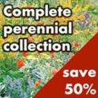 Complete Perennial Collection - half price - £40 @ Dobies