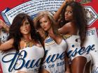 Budweiser - 20 x 440ml cans @ Asda - £12