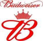 4x500ml budweiser cans £3.79 at Lidl