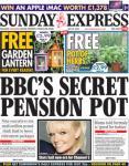 FREE garden lantern PLUS a FREE pot of herbs in Sunday Express