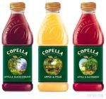 Copella Pure Juice 750ml @ Tesco £1 - all flavours