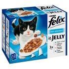 Felix Cat food 12x100g 3 for £7.50 @ Sainsbury's