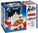 Felix Meat Selection 12 x 100g sachets £2.50 at Morrisons