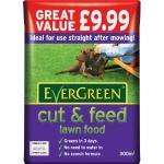 Cut & Feed Lawnfood 300m Bag £1.75 Tesco