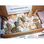 Genuine Dinosaur and Fossil Collection - NEW 30 fossil set- Shark + Mammoth and more - Labels and information sheet - WAS £49.99 now £19.99 delivered @ Amazon