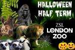 'London Zoo' £8 instead of £19 for a week day ticket during this half term 25th-29th @ Groupon