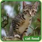 Trial Sample of James Wellbeloved Pet Food