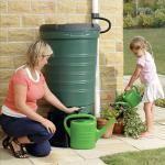 Rainsaver Water Butt Kit Subsidised 190 Litres capacity £27.95 delivered @ evengreener
