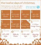 Dwell 12 days of Christmas sale