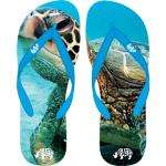 Beasts Designer Flip-Flops - Various Sizes & Designs - £4.99 Delivered @ 7 Day Shop