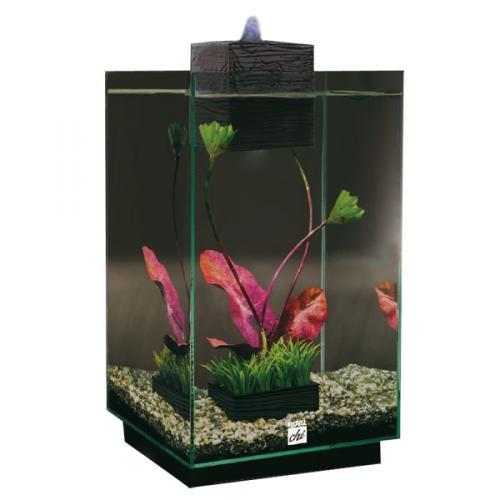 Fluval Chi Aquarium 25Ltr - £63.99 @ Pets Ahead