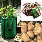 Free Potato Growing Kit (Worth £16.61 only pay P&P of £4.50) @ plantoffers.com