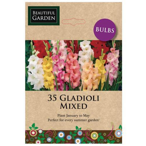 Huge Variety of Bulbs and Seeds - £1 @ Poundland