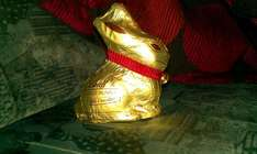 lindt Gold Bunny 100g milk chocolate instore only at 99p stores