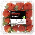 800g (2x400g) Strawberries for £3 @ sainsburys