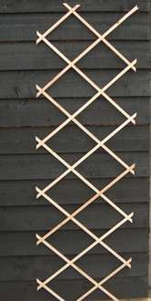 6ft by 2ft trellis - £1.00 @ Poundland