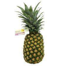 TESCO EXTRA LARGE PINEAPPLES £1 :)