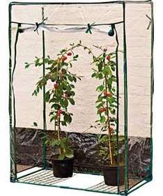 Tomato Growbag Greenhouse.  720/4452  £6.99 @ ARGOS click & collect