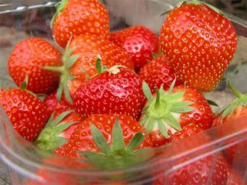 Fresh Strawberries 400g - £1.29 @ Spar