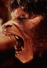 An American Werewolf In London (Blinkbox)
